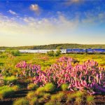rail holidays packages australia