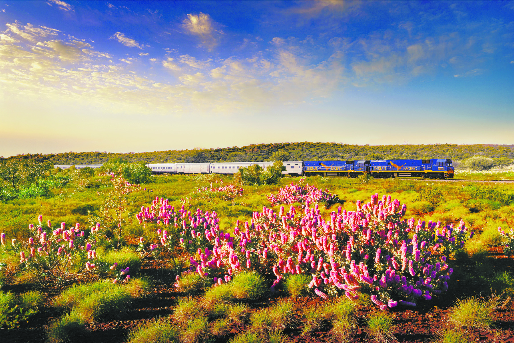 rail holidays packages australia
